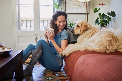 Woman sitting on floor, smiling, holding coffee cup, looking at large dog in in their temporary housing